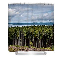 Logging Road Landscape Shower Curtain