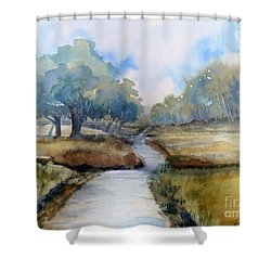 Backroads Of Georgia Shower Curtain by Sally Simon