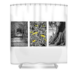 Backwoods Escape Triptych Shower Curtain by Carolyn Marshall