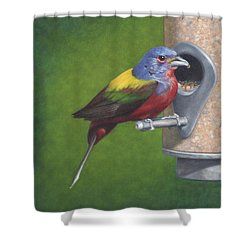 Backyard Bunting Shower Curtain