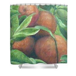 Backyard Oranges Shower Curtain