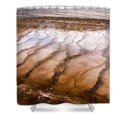 Bacterial Mat - 1 Shower Curtain by Dan Hartford
