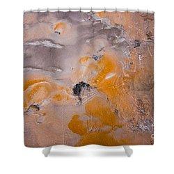 Bacterial Mat - 4 Shower Curtain by Dan Hartford