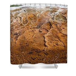 Bacterial Mat 7 Shower Curtain by Dan Hartford
