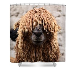 Bad Hair Day Shower Curtain by James Brunker