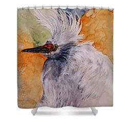 Bad Hair Day Shower Curtain by Lil Taylor