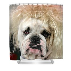 Bad Hair Day Shower Curtain