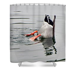 Shower Curtain featuring the photograph Bad Landing by Deb Halloran