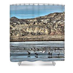 Shower Curtain featuring the digital art Badlands Spring Thaw by Aliceann Carlton