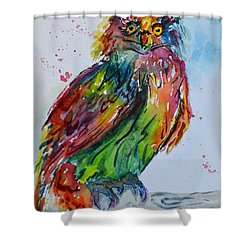 Baffled Owl Shower Curtain by Beverley Harper Tinsley