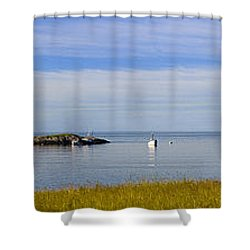 Bailey's Mistake Panorama Shower Curtain by Marty Saccone