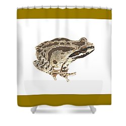 Baja California Treefrog Shower Curtain by Cindy Hitchcock