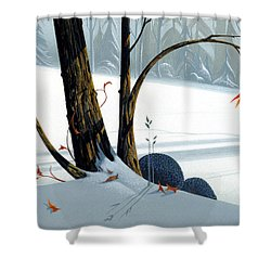 Balancing Act  Shower Curtain by Michael Humphries