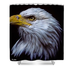 Shower Curtain featuring the photograph Bald Eagle by Jeff Goulden