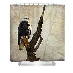 Bald Eagle Keeping Watch In Illinois Shower Curtain