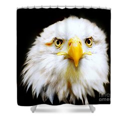 Bald Eagle Shower Curtain by Jacky Gerritsen