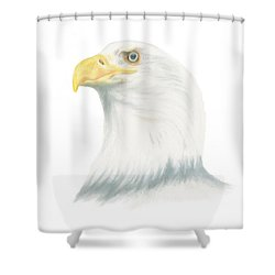 Shower Curtain featuring the drawing Bald Eagle by Terry Frederick