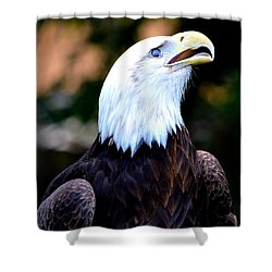 Shower Curtain featuring the photograph Bald Is Beautiful by Deena Stoddard