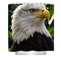 Bald Is Beautiful Shower Curtain