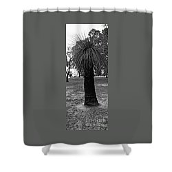 Shower Curtain featuring the photograph Balga Tree by Cassandra Buckley