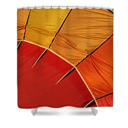 Balloon Fest Shower Curtain by Art Block Collections