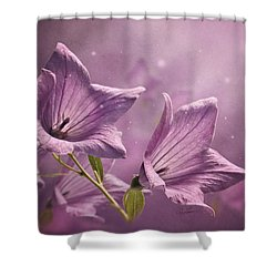 Shower Curtain featuring the photograph Balloon Flowers by Ann Lauwers