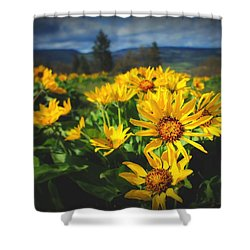 Balsamroot Of The Gorge Shower Curtain