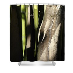 Bam  Boo  Shower Curtain