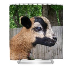 Bambi Shower Curtain by Belinda Lee