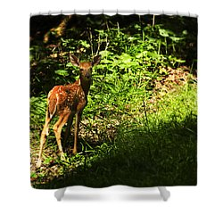 Bambi Shower Curtain