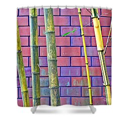 Bamboo And Brick Shower Curtain by Ethna Gillespie