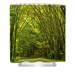 Shower Curtain featuring the photograph Bamboo Forest by Mitch Cat