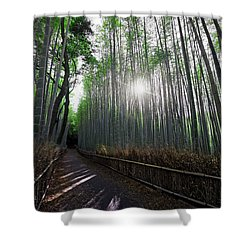 Bamboo Forest Path Of Kyoto Shower Curtain by Daniel Hagerman