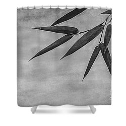 Bamboo - Gray Shower Curtain by Hannes Cmarits