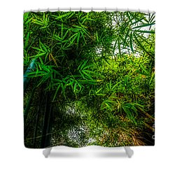 bamboo III - green Shower Curtain by Hannes Cmarits