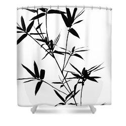 Bamboo Shadows Shower Curtain by Jenny Rainbow