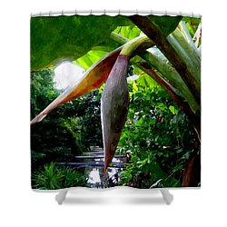 Banana Flower Shower Curtain by Lanjee Chee