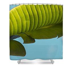 Banana Leaf And Maui Sky Shower Curtain by Sharon Mau