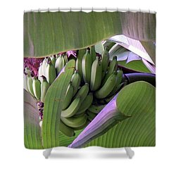 Banana Leaf Curtain Shower Curtain