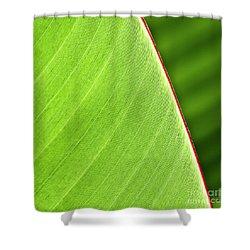 Banana Leaf Shower Curtain by Heiko Koehrer-Wagner
