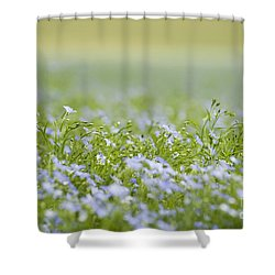 Bands Of Blue Shower Curtain by Anne Gilbert