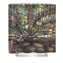 Banyan Tree Lahaina Maui Shower Curtain
