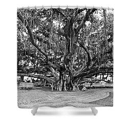 Banyan Tree Shower Curtain