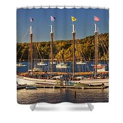 Bar Harbor Schooner Shower Curtain by Brian Jannsen