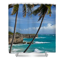 Barbados Shower Curtain by Brian Jannsen