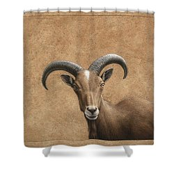 Barbary Ram Shower Curtain by James W Johnson