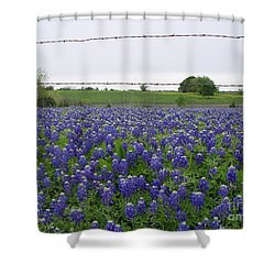 Barbed Wire Bluebonnets Shower Curtain