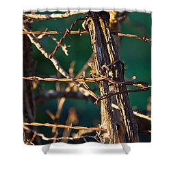 Don't Fence Me In Shower Curtain by Mark Alder