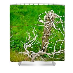 Barbs And Briers Shower Curtain