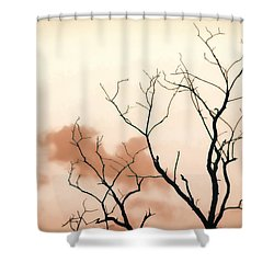 Bare Limbs Shower Curtain by Denise Romano